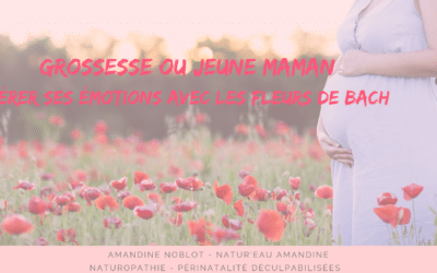 GROSSESSE OU JEUNE MAMAN : Gérer ses émotions avec les fleurs de Bach