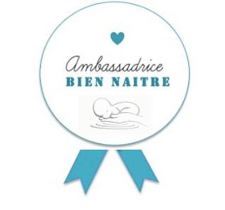 Ambassadricebiennaître EcoleSoniaKrief Ecoledubiennaître Naître bebe périnatalité accompagnement parentalité Troyes Aube natureauamandine